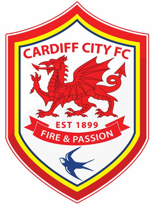 Image-3-for-cardiff-city-re-branding-in-pictures-gallery-599602261